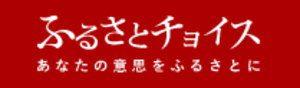 ふるさとチョイス 佐賀県NPO支援