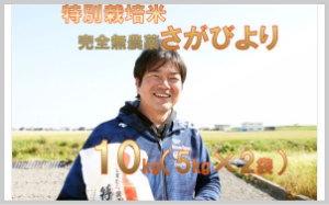 【完全無農薬米】さがびより 10kg(5㎏×2)